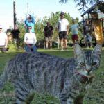 le club aikido cherbourg cotentin propose des cours d'été à Equeurdreville Hainneville pour votre zénitude et bien-être des arts martiaux
